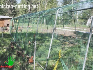 chicken net fits in any environment and moves easily creating divisions of any shape, not necessarily square or rectangular.