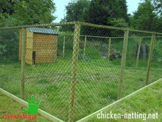 A movable chicken pen built with plastic poultry netting will be easily moved to the next grazing ground