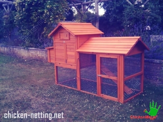 a nice looking poultry house that has access to the ground built with chicken mesh CHICKENMALLA