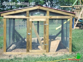 Wire mesh poultry netting tends to be more expensive and more difficult to install than plastic netting.